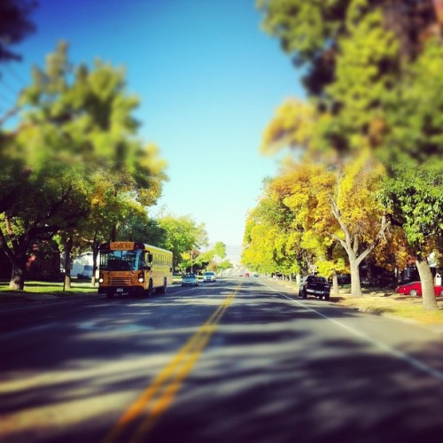 Fall Colors 🍁🍃🍂🌿 | #utah #travel #trees #street #fall #iphone4 #iphography  (Taken with Instagram at Logan, UT)