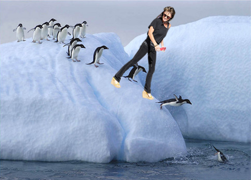 Penguin Slide + transparent_sarah_palin.png