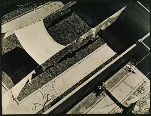 "Today we are celebrating the birthday of PAUL STRAND! (1890-1976) Paul Strand, Geometric Backyards, New York, 1917 Platinum Print  ""When he made this picture in 1917, Strand was living in his family's townhouse on West 83rd Street in New York. For twenty-four years he had seen the view from the back window. But it was only after the summer of 1916, when he had made abstractions from porch shadows in Connecticut, that he could see the backyards, sheets, and shadows this way. Once he had discovered the picture under his nose, Strand might have said, as did the sculptor Archipenko, ""New York is a visible abstraction."" -From the Metropolitan Museum of Art"