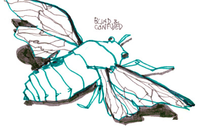 turns out cicadas are really fun to draw. i enjoy their fat, solid little bug bodies.