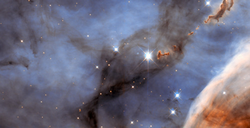 These unusual blobs found in the Carina nebula, some of which are seen floating on the upper right, might best be described as evaporating. Ironically the blobs, otherwise known as dark molecular clouds, frequently create in their midst the very stars that later destroy them.