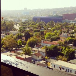 #view of #losangeles from #sofitel #la (Taken with Instagram)