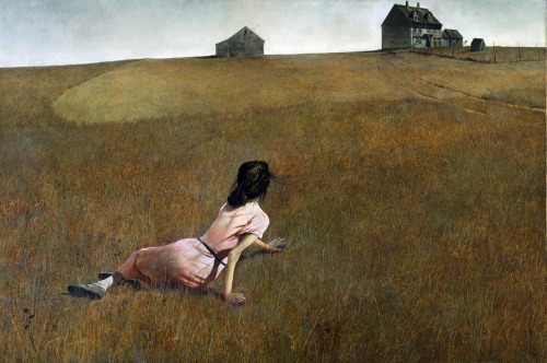 piquette:  Christina's World by Andrew Wyeth (1948)  When I saw this at the MOMA in NY I stared at it for a good 15 minutes. I was stoned. I felt that Christina was desperate, she wanted to move and she couldn't. I feel desperate right now. I feel like this beautiful painting by Wyeth.