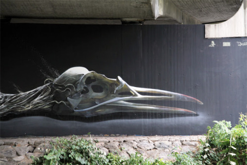 Disk x Dust New Mural In Freiburg, Germany (Disk's bird skull detail)