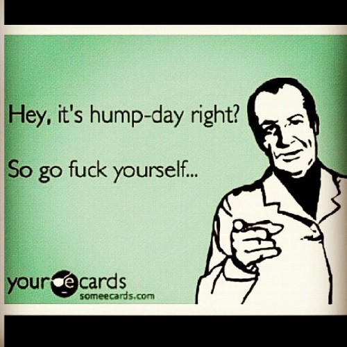 Wednesday hump day ecards wednesday hump day ecards happy hump day ecards hump day m4hsunfo