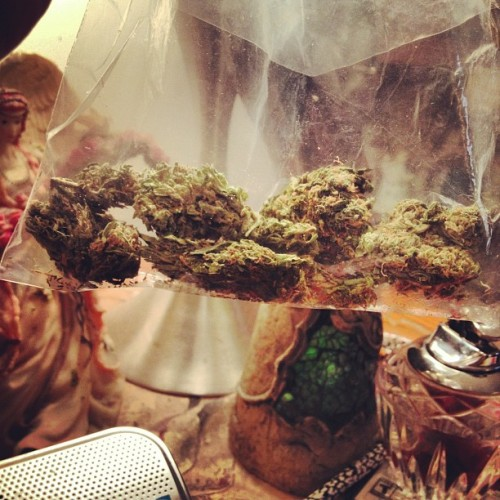 flyhigh-diehigh:  7g of Green Crack #weed #greencrack  (Taken with Instagram)