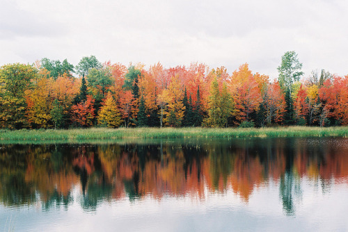 fall reflection by highjoeltage on Flickr.