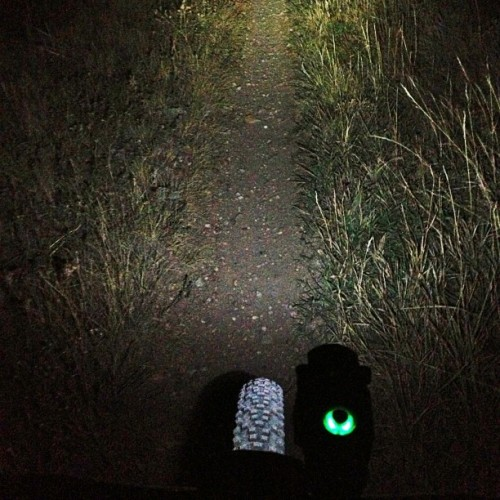 All is good. #fall #nightrides #fromwhereiride #hbstachecrew  (Taken with Instagram)