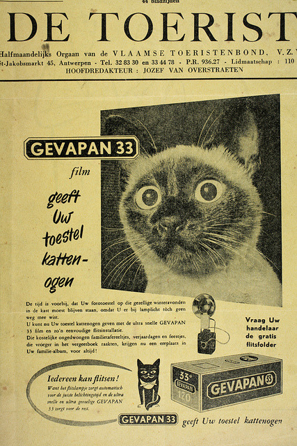 "Ad for Gevapan film. Soure: roger.laute on Flickr. I think this translates from Flemish as: ""Gevapan 33 film gives your camera cat eyes."""