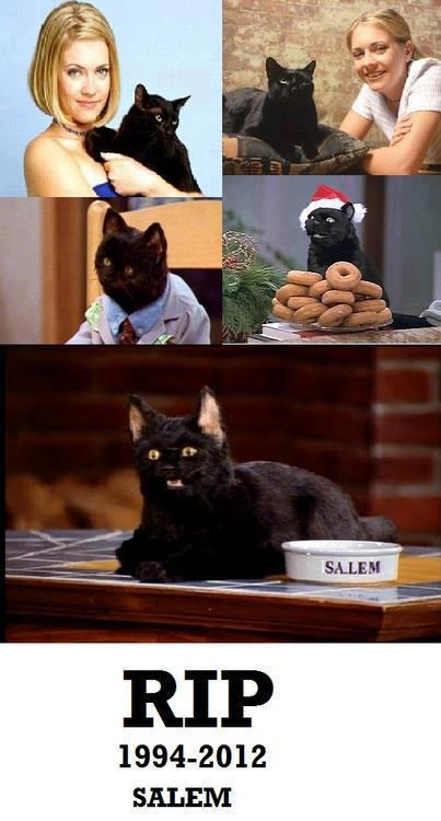 fuckyeah1990s:  I thought Salem was a robot… you mean he was real this entire time?