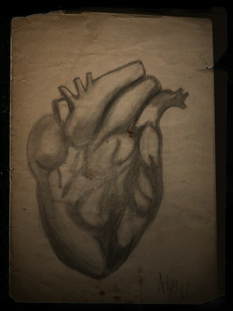 Human heart sketch. Aged photo filter.