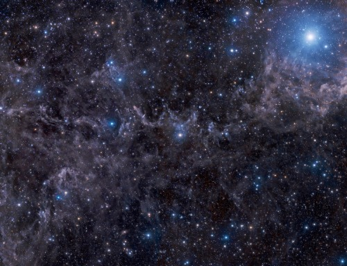 poniesareevil:  Stars in a Dusty Sky Image Credit & Copyright: John Davis Explanation: Bright star Markab anchors this dusty skyscape. At the top right corner of the frame, Markab itself marks a corner of an asterism known as the Great Square, found within the boundaries of the constellation Pegasus, the flying horse. The wide and deep telescopic view rides along for some 5 degrees or about 10 times the angular diameter of the Full Moon, with blue reflection nebulae scattered around the scene. And even though this line-of-sight looks away from the plane of our Milky Way galaxy, it covers a region known to be filled with nearby molecular clouds. The associated dust clouds, high latitude galactic cirrus, are less than 1,000 light-years distant. Still apparent, but far beyond the Milky Way, are background galaxies, like the prominentedge-on spiral NGC 7497 near picture center.