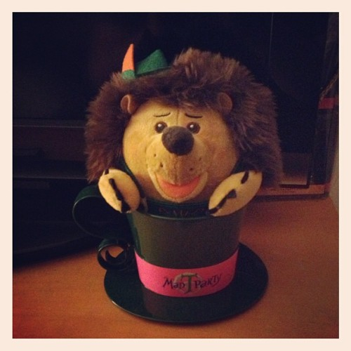 Late night antics have resulted in Mr.PricklePants sitting inside my Mad Hatter teacup. Although I can not explain why this has happened, I am quite pleased that it has. #MadTParty (Taken with Instagram at The Batcave.)