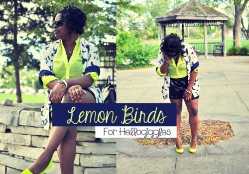 Love Hartley: LEMON BIRDSby Cymone Hartley http://bit.ly/USRoWH