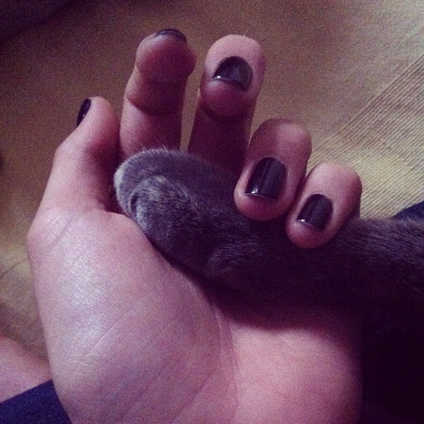 Me and Flo holding paws (Taken with Instagram)