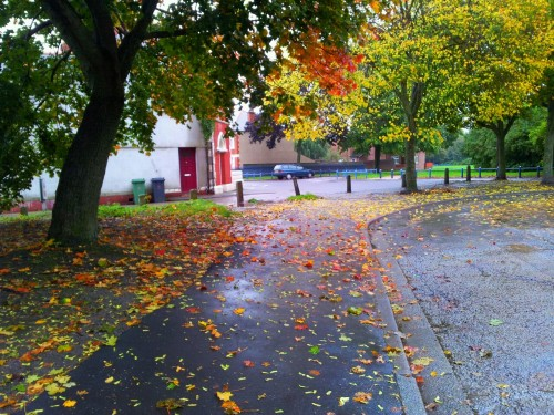 autumn colours, butetown