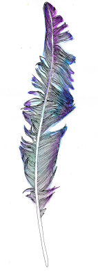 linear-thoughts:  Feather 2, A4. (coloured, yo)