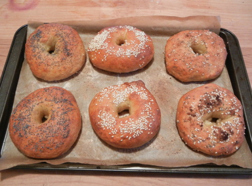 "There is really only one way to eat bagels. And that's with tomato, lox and cream cheese. Don't even try to argue with me because you know it's true. I've been meaning to try to make bagels for a while. Of course, when the day came for me to make them, I hadn't read the recipe all the way through before hand and didn't realized they took two days to make. And I didn't have two days. So hopefully you're reading this and you now know that bagels take two days to make. See? I even put it in bold so that you'd be sure to see it. So anyway, I had to wait till I had the time to make them. Despite the time commitment, the dough is easy to make. I used Peter Reinhart's recipe off of Smitten Kitchen. I made the bagels in two batches: The first batch (and the ones in the picture) I baked at the end of the day. The bagels had been proofing in the fridge for 8 hours at this point. The bagels came out light and fluffy and right out of the oven and then became denser after sitting for a while. However the crumb was still too airy. The second batch I baked two days later. These bagels were much denser and a couple hours later the crust was almost rock hard. They were also not as attractive. I would prefer a bagel in between these two. Something dense, but still airy. Next time, I think I will let them proof in the fridge for a day and take them out of the fridge 30 minutes before boiling and baking them. I was also not able to get my hands on high-gluten flour so I used bread flour and added 1/4 cup of wheat gluten to the recipe. This recipe makes about 16 bagels, but it really depends on how big you make your bagels. Peter Reinhart's Bagels Sponge 1 teaspoon instant yeast 4 cups unbleached high-gluten or bread flour 2 1/2 cups water, room temperature Dough 1/2 teaspoon instant yeast 3 3/4 cups unbleached high-gluten or bread flour 2 3/4 teaspoons salt 2 teaspoons brown sugar To Finish 1 tablespoon baking soda Cornmeal or semolina flour for dusting Sesame seeds, poppy seeds, kosher salt, cheese, really whatever you like on your bagels. Day one: To make the sponge, stir the yeast into the flour in a 4-quart mixing bowl. Add the water, whisking or stirring only until it forms a smooth, sticky batter (like pancake batter). Cover the bowl with plastic wrap and leave at room temperature for approximately 2 hours, or until the mixture becomes very foamy and bubbly. It should swell to nearly double in size and collapse when the bowl is tapped on the countertop. To make the dough, in the same mixing bowl (or in the bowl of an electric mixer), add the additional yeast to the sponge and stir. Then add 3 cups of the flour and all of the salt and brown sugar. Stir (or mix on low speed with the dough hook) until the ingredients for a ball, slowly working in the remaining 3/4 cup flour to stiffen the dough. Transfer the dough to the counter and knead for at least 10 minutes. The dough should be firm, but still pliable and smooth. There should be no raw flour – all ingredients should be hydrated. The dough should pass the windowpane test*. If the dough seems to dry and rips, add a few drops of water and continue kneading. If the dough seems tacky or sticky, add more flour to achieve the stiffness required. The kneaded dough should feel satiny and pliable but not be tacky. *The windowpane test is when you take a small piece of dough and stretch it between your fingers. The dough should not snap/rip and instead should stretch so that you can see light through it. Immediately divide the dough into 4 1/2 ounce pieces for standard bagels, or smaller if desired. Form the pieces into rolls. Cover the rolls with a damp towel and allow them to rest for approximately 20 minutes. Line 2 sheet pans with baking parchment. Poke a hole in a ball of bagel dough and gently rotate your thumb around the inside of the hole to widen it to approximately 2 1/2 inches in diameter (half of this for a mini-bagel). The dough should be as evenly stretched as possible (try to avoid thick and thin spots.) Place each of the shaped pieces 2 inches apart on the pans (Deb note: I got away with 1-inch space for the minis). Mist the bagels very lightly with the spray oil and slip each pan into a food-grade plastic bag, or cover loosely with plastic wrap. Let the pans sit at room temperature for about 20 minutes. Check to see if the bagels are ready to be retarded in the refrigerator by using the ""float test"". Fill a small bowl with cool or room-temperature water. The bagels are ready to be retarded when they float within 10 seconds of being dropped into the water. Take one bagel and test it. If it floats, immediately return the tester bagel to the pan, pat it dry, cover the pan, and place it in the refrigerator overnight. If the bagel does not float, return it to the pan and continue to proof the dough at room temperature, checking back every 10 to 20 minutes or so until a tester floats. The time needed to accomplish the float will vary, depending on the temperature and the stiffness of the dough. The next day, preheat the oven to 500° F with the racks set in the middle of the oven. Bring a large pot of water to a boil (the wider the pot the better), and add the baking soda. Have a slotted spoon or skimmer nearby. Remove the bagels from the refrigerator and gently drop them into the water, boiling only as many as comfortably fit (they should float within 10 seconds). After 1 minutes flip them over rand boil for another minute. If you like very chewy bagels, you can extend the boiling to 2 minutes per side. While the bagels are boiling, sprinkle the same parchment-lined sheet pans with cornmeal or semolina flour. If you want to top the bagels, do so as soon as they come out of the water. You can use any of the suggestions in the ingredients list or a combination. When all the bagels have been boiled, place the pans on the 2 middle shelves in the oven. Bake for approximately 5 minutes, then rotate the pans, switching shelves and giving the pans a 180-degree rotation. After the rotation, lower the oven setting to 450 degrees F and continue baking for about 5 minutes, or until the bagels turn light golden brown. You may bake them darker if you prefer. Remove the pans from the oven and let the bagels cool on a rack for 15 minutes or longer before serving. Total Time: About 1 Day and 4 hours"