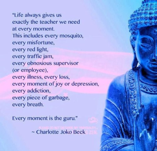 parkstepp:  Each moment is a guru….