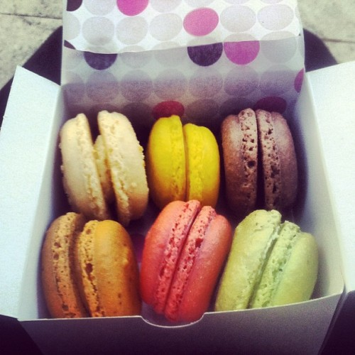 tarekkasmi:  WOOSH. Macarons from Le Macaron in Winter Park. Very, very good dessert. Coconut, lemon cream, Belgian chocolate, Colombian coffee, raspberry, and basil white choloate. :) #dessert #macaron #winterpark (Taken with Instagram at Park Avenue)