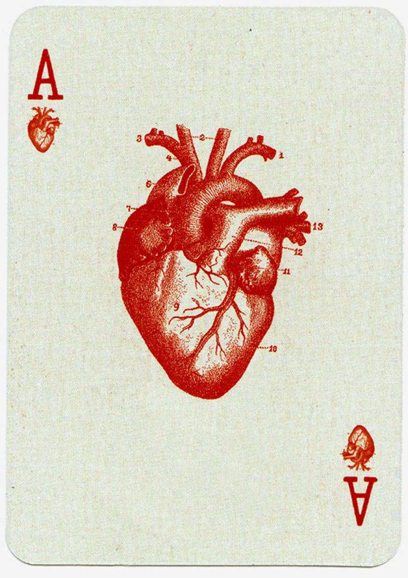 likeafieldmouse:  Ace of Hearts