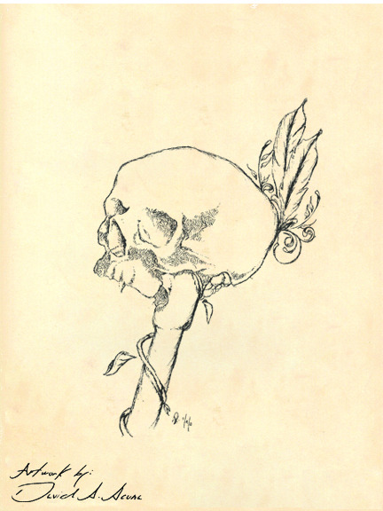 Sketch of a skull. ballpoint pen on paper.