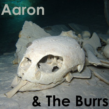 "Aaron and the Burrs - Aaron and the Burrs <a href=""http://aaronandtheburrs.bandcamp.com/album/aaron-the-burrs"" data-mce-href=""http://aaronandtheburrs.bandcamp.com/album/aaron-the-burrs"">Aaron & the Burrs by Aaron and the Burrs</a>"