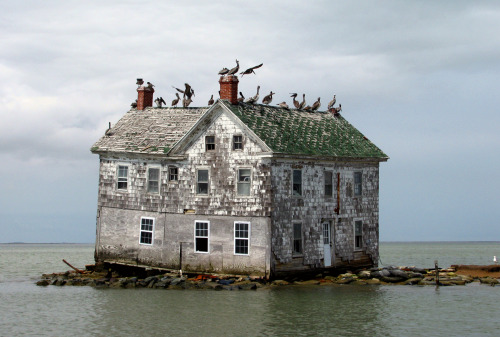 LAST HOUSE ON HOLLAND ISLAND The winter storms early in 2010 took a severe toll on this proud remnant of another century and another way of life. The brick skirting around the foundation has been washed away and the entire foundation on the right (south) side is gone. ( Image via: baldeaglebluff )