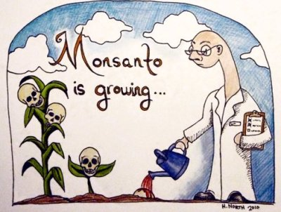 "davereed:  srecord:  Monsanto spends millions to keep public in the dark & silence dissent October 12, 2012 An intense advertising blitz, funded by Monsanto Co and others, has eroded support for a California ballot proposal that would require U.S. food makers to disclose when their products contain genetically modified organisms. If California voters approve the measure on November 6, it would be the first time U.S. food makers have to label products that contain GMOs, or ingredients whose DNA has been manipulated by scientists. The United States does not require safety testing for GM ingredients before they go to market. Industry says the products are safe, but there is a fiery debate raging around the science. Dozens of countries already have GM food labeling requirements, with the European Union imposing mandatory labeling in 1997. Since then, GM products and crops have virtually disappeared from that market. For more than a week, an opposition group funded by Monsanto, PepsiCo Inc and others has dominated television and radio air time with ads portraying the labeling proposal as an arbitrary set of new rules that will spawn frivolous lawsuits and boost food prices, positions disputed by supporters of the proposed new measures. Experts say the real risk is that food companies may be more likely to stop using GMOs, than to label them. That could disrupt U.S. food production because ingredients like GM corn, soybeans and canola have for years been staples in virtually every type of packaged food, from soup and tofu to breakfast cereals and chips. Support for the GMO labeling proposal has plummeted to 48.3 percent from 66.9 percent two weeks ago, according to an online survey of 830 likely California voters conducted for the California Business Roundtable and Pepperdine University's School of Public Policy by M4 Strategies. At the same time, the proportion of respondents likely to vote ""no"" on the measure - known as Proposition 37 - jumped to 40.2 percent from 22.3 percent two weeks ago, according to the survey results released on Thursday. ""Clearly the 'No' side has more money and the advertising is having an effect,"" Michael Shires, a Pepperdine professor who oversees the survey, told Reuters. Funding for the effort to defeat the ""Right to Know"" ballot is led by chemical giants Monsanto and DuPont, each of which owns businesses that are the world's top sellers of genetically modified seeds. Monsanto has contributed just over $7 million to fight the proposal, while DuPont has kicked in about $5 million. In all, the ""No on 37"" camp raised a total of $34.6 million, according to filings with the California Secretary of State. ""Yes on 37"" supporters, led by the Organic Consumers Association and Joseph Mercola, a natural health information provider, have donated $5.5 million. ""When there's an initiative that's going to affect an industry that can rally resources, they've usually been able to stop it,"" said Shires. ""It still could go either way."" ADVERTISING WAR Supporters of the new labeling measures on Thursday accused the ""No on 37"" group of ""pounding Californians with lies and deception"", but the group says it is simply underscoring flaws in the labeling proposal. The ""No on 37"" group recently had to pull an ad that identified its star, Henry Miller, as a Stanford University doctor rather than as a fellow at the conservative Hoover Institution think tank on the university's campus. The group corrected the affiliation after Stanford complained. Supporters of the ballot initiative, including food and environmental activists as well as organic growers, say consumers have the right to know what's in the food they eat. Because foods made with GMOs are not labeled, it is impossible to trace any food allergies or other ill effects suffered by humans or animals, they say. Drafters of Proposition 37 say they excluded certain foods from the labeling rules to make them simpler and less burdensome for businesses. Exemptions include restaurant food as well as milk and meat from animals that eat GM feed. California is the top milk-producing state in nation and its restaurant industry has annual sales of about $58 billion. It is not a significant producer of GM crops. Opponents of the bill have seized on the exclusions. Their ads question why a frozen pizza (sold in a supermarket) would be labeled, while delivery pizza (from a restaurant) would not. Source It seems like everyday I read about some new thing that Monstanto is doing that they definitely shouldn't be doing.   Hey California - Yes on 37."
