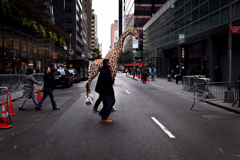 Man carrying a giraffa , 5th Ave Manhattan 2012