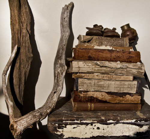 valscrapbook:  Old Books and Driftwood by Charlie Kinyon on Flickr.