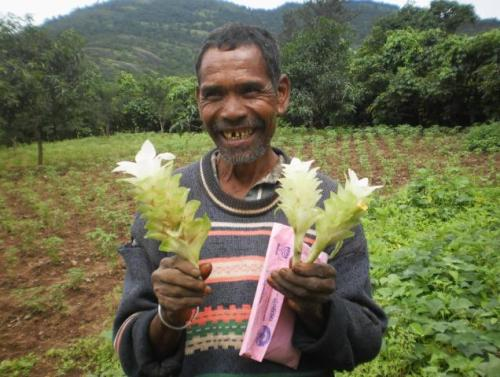 deafmuslimpunx:  INDIA: TRIBAL FARMER RAISES VARIETY OF 40 PLANTS FOR BIODIVERSITY ON HIS FARM. Biodiversity is extremely important for agriculture and farming, it helps keep the soil fertile. In the meanwhile, many Western agricultural corporations and capitalist farms try to promote monoculture, which is bad for our planet and can cause soil degradation. Via The Hindu:   Killo Dombu of Anthriguda village in Dumbriguda mandal is proud of his achievements. Almost every plant is productive on his one-acre plot which yields cash crops. The innovative methods of cultivation adopted by him are a big draw today. He is growing 40 varieties of horticulture plants, using bio-pesticides and adopting totally organic methods of cultivation. The crops being raised by him include vegetables, fruit plantations, forestry species, creeper vegetables, floriculture, tubers, oilseeds and medicinal plants. He has a bio-mass based manure pit in one corner of his plot. He also has cattle which give milk, cow dung and the stuff required for producing organic manure. Dombu advocates growing multiple crops instead of mono-crop. His plantations include 40 plants each of mango, chiku, acid lime, red sanders, teak, bamboo, fish tail palm, jack, jamun, cluster apple, guava and Bahumia. Creeper varieties are pumpkin, beans, bottlegourd and ridgegourd. His plantation is fenced with trees such as euphorbia, agave and jetropha. Vegetables including brinjal, green pepper, chilli, pepper, rajma and cabbage are being grown as inter-crops along with medicinal plants. P. Viswanatham, chairman of Vikasa, an NGO working to propagate organic farming among tribal farmers, told The Hindu that Dombu had been a source of inspiration to other 'Maa Thota' farmers. Dombu says that he is earning Rs.50,000 per year on the crop yield. Besides, the millet crops cultivated in his land take care of daily bread of his family members. A beaming Dombu shares his success story with his co-farmers and asks them to adopt his methods of farming. His wife, daughter and son-in-law together work in his 'Maa Thota' supported by NABARD. Not many visitors understand what he tries to communicate in chaste Odisha but the smile on his face and his green garden speak volumes for his achievement.