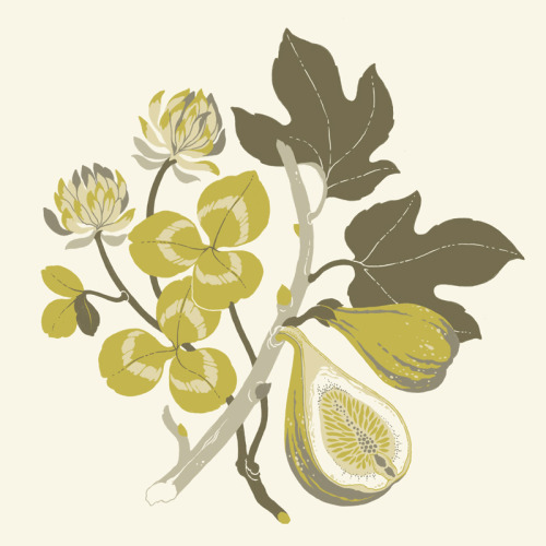 teaganwhite:  A little illustrated icon, for a blog called Fig & Clover!