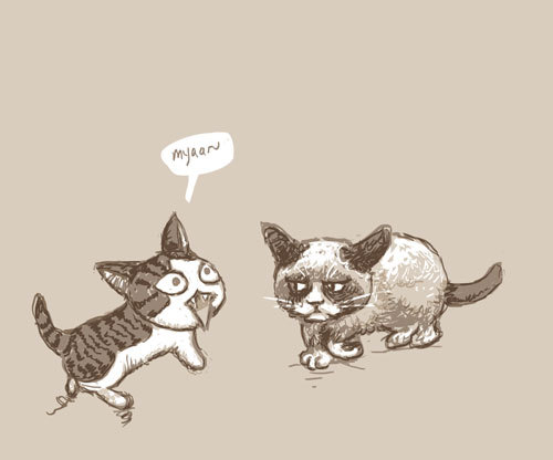 Chi, Meets A Grumpy Cat