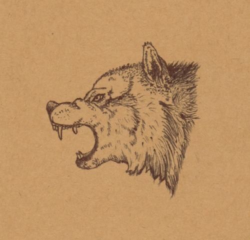 'vargtimmen (hour of the wolf)' - pen