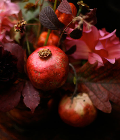 Pomegranates are in season again! ~ La