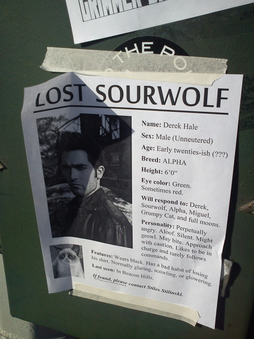 "heathyr:  boone128:  Flyer on my way to Comic-Con.   ""The reward is my everlasting gratitude"""