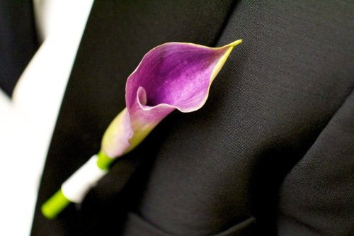 Boutonniere,  Washington, DC