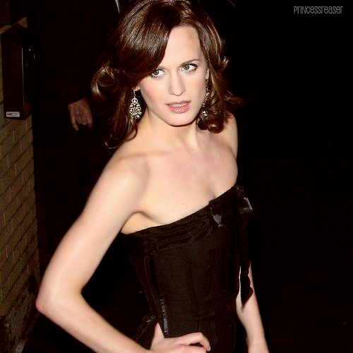 25 / 100 photos of Elizabeth Reaser