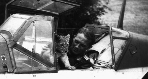 Luftwaffe flying ace Franz von Werra with a lion cub in the cockpit  Also, in case anyone cares, definitely saw Argo tonight and while it was American leaning with respects to the level of Canadian involvement (Canada did a lot more than the movie shows), it was a good film. It even explained (in a very concise way) the 1953 GB/US coup to dispose Mossadegh. It's sort of awesome. That is all/csb