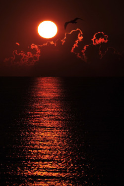 waterhermit:  opticoverload:  A Sunrise over the Black Sea, Crimea