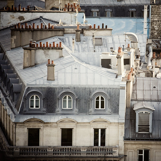 | ♕ |  Century-old Paris Apartment  | by © Irene Suchocki | via ysvoice