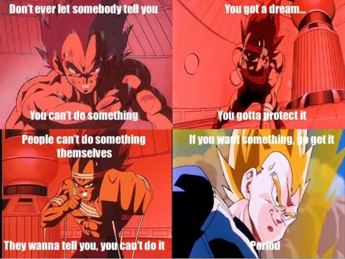 Vegeta taught me what pride really means.