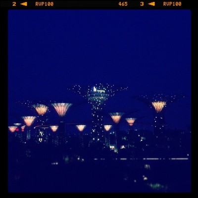 Light the Night like a Star (Taken with Instagram at Garden by the bay)