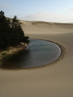 tupac:  The Oregon Sand Dunes by kyojitsuhimaku