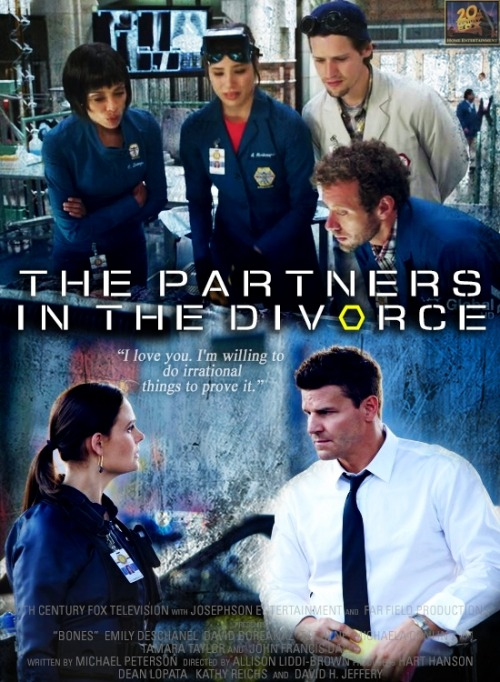 episodes as movie posters | 8x02 The Partners in the Divorce