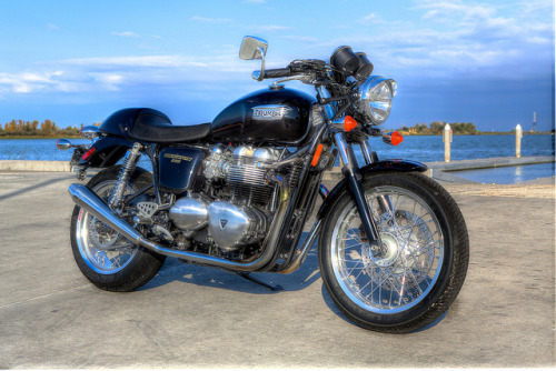 My buddy's Thruxton on Flickr.Triumph Thruxton - Predator exhaust, 170 rear tire…