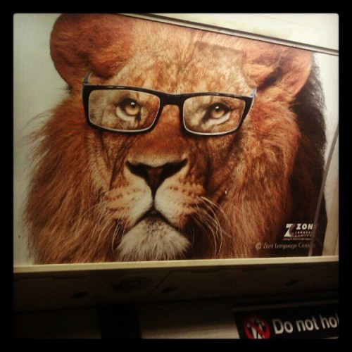 Yes, those glasses make you look smarter (Taken with Instagram)