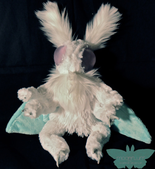 fuckyeahmoths:   Mothbaby from Moonfluff. Etsy: http://www.etsy.com/shop/Moonfluff (Commissions open)  (submitted by shanners1)