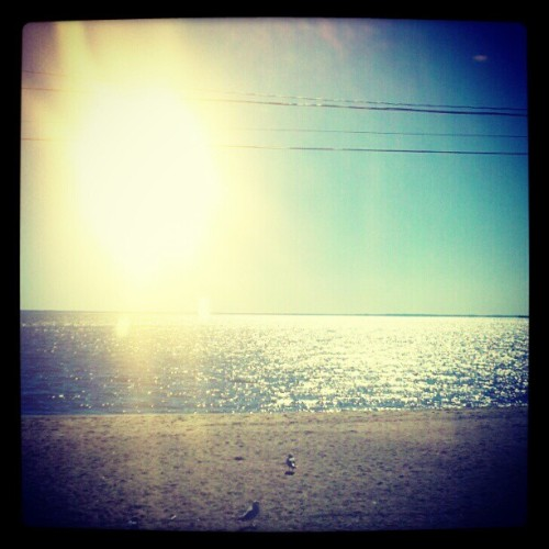 (Day 13) #landscape #fmsphotoaday (Taken with Instagram at Lordship Beach/Seawall)